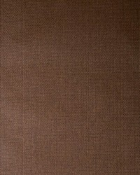 75060w Pedro Raw Umber 01 by