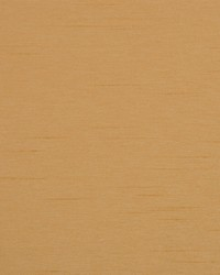 Camelot Birch by