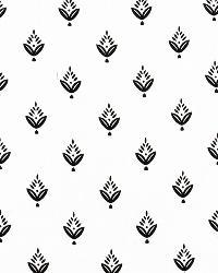 Black Small Print Floral Fabric  Ponderosa Pine Chalkboard