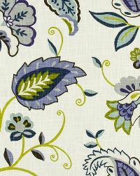 Everdeen Iris by