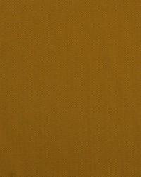 Prairie Goldenrod by