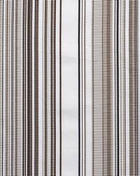 Stripe Mania Bright Beige by