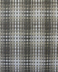 Twiggy Deep Gray Shades by