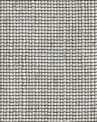 Seed Sheer Paglierino by
