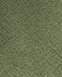Cotton Plot Forest Green by