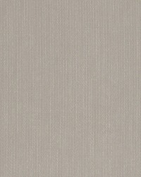 Yoga Taupe by