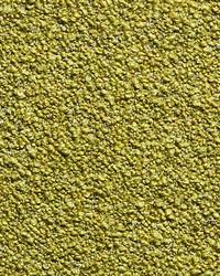Ladakh Boucle Lime by
