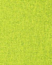Giasone Fr Lime by
