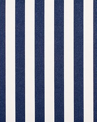 Awning Stripe Indigo by