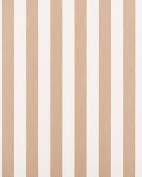 Awning Stripe Dune by