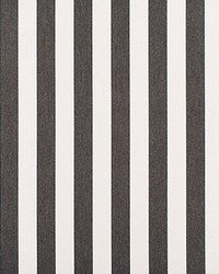 Awning Stripe Coal by
