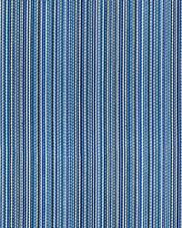 Alder Stripe Bluejay by