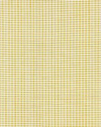 Magpie Lemon by