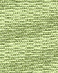 Valverde Lime by