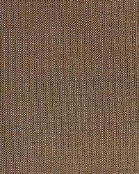 Dupioni Solids Copper by