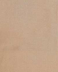 Dupioni Solids Chitoor by