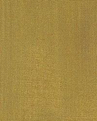 Dupioni Solids Bijapur by