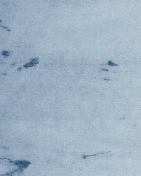 Polar Bear Blue Frost by