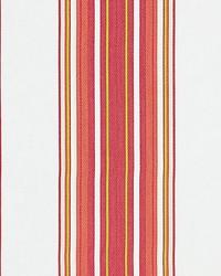 Cabana Stripe Hibiscus by