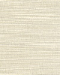 Fine Sisal Ivory by  Scalamandre Wallcoverings