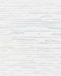Canyon Ice by  Scalamandre Wallcoverings