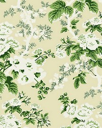 Ascot Floral Print Verdure by  Scalamandre Wallcoverings