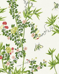 Jardin De Chine Spring by  Scalamandre Wallcoverings