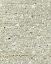 Olivia Embroidered Grasscloth Winter Wheat by  Scalamandre Wallcoverings