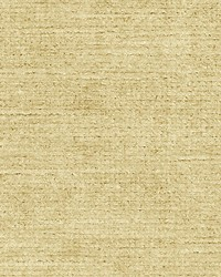 Persia Beige by