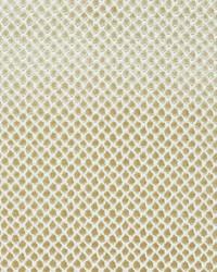 Etosha Velvet Sand by