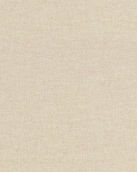 Fresco Brushed Cotton Ginger by