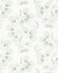 Hana Embroidery Eucalyptus by