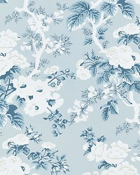 Ascot Floral Print Sky by  Scalamandre Wallcoverings