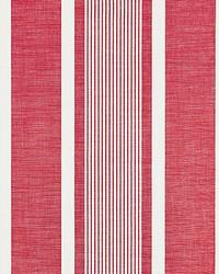 Wellfleet Stripe Berry by