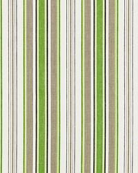 Andover Cotton Stripe Green Tea by