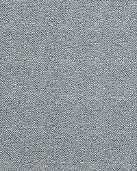 Pebble Texture Bluestone by