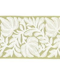 Coventry Embroidered Tape Celery by  Scalamandre Trim