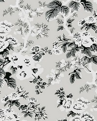Ascot Floral Print French Grey by  Scalamandre Wallcoverings