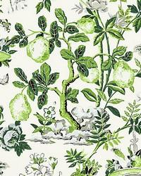 Shantung Garden Verdance by  Scalamandre Wallcoverings