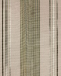 Astor Stripe Celadon by