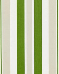 Mayfair Cotton Stripe Summer Lawn by