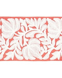 Coventry Embroidered Tape Coral by