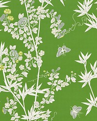 Jardin De Chine Jade by  Scalamandre Wallcoverings
