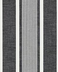 Wellfleet Stripe Carbon by