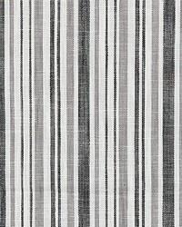 Pembroke Stripe Charcoal by