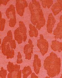 Chita Tangerine by