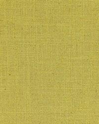 Hampton Weave Fern by
