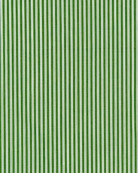 Kent Stripe Grass by