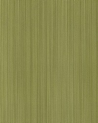 Aria Strie Moss by  Scalamandre Wallcoverings
