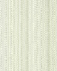 Aria Strie Sage by  Scalamandre Wallcoverings
